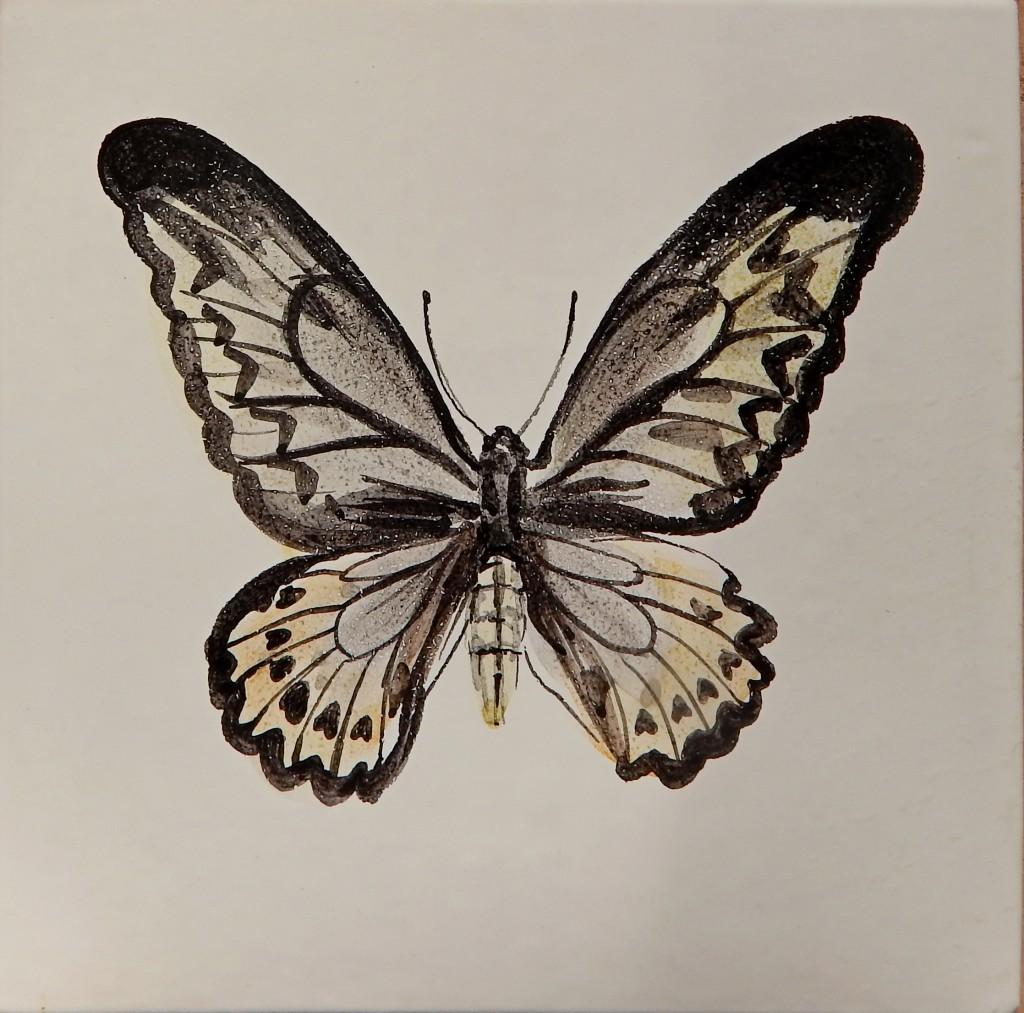 Бабочка_5