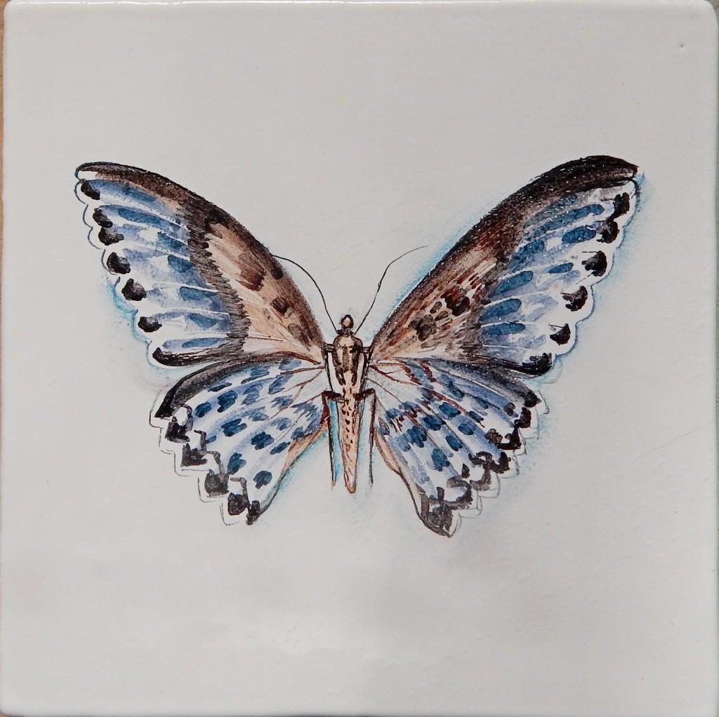 Бабочка_6