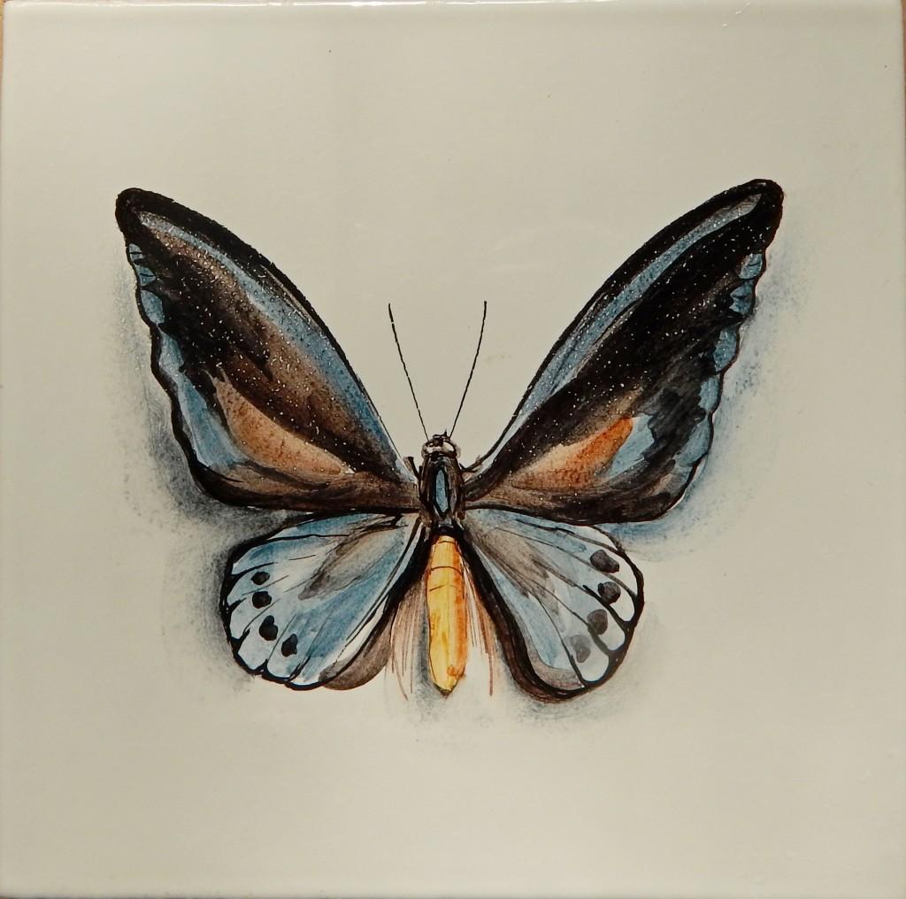 Бабочка_4