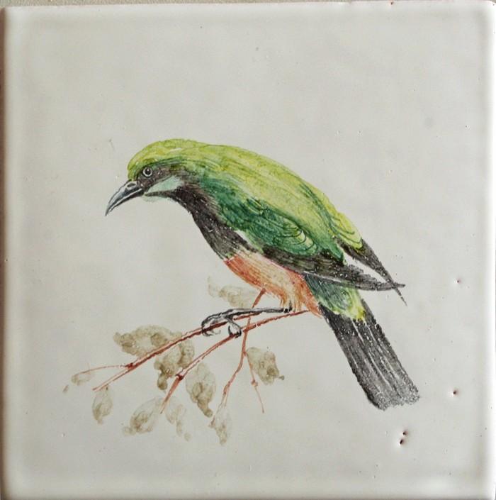 Птица на сайт