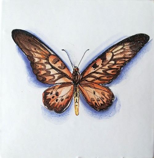 Серия «Природа»